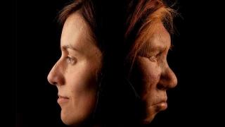Ești pasăre de noapte sau ai artrită? Neanderthalian-ul din tine este de vină!
