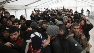 """""""Europa este pe cale să comită un suicid ritualic cu imigranții"""""""