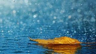 O săptămână ploioasă la malul mării