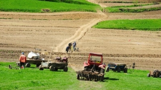 Facem agricultură și nu prea!