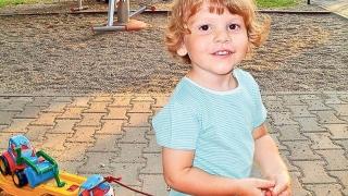 Familia copilului ucis de câini a primit două milioane de euro despăgubiri