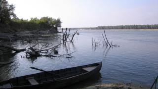 Fără documente legale nici pentru peşte, nici pentru barcă