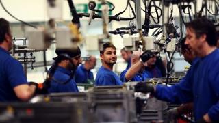 Forța de muncă tânără - as la teorie, zero barat la practică