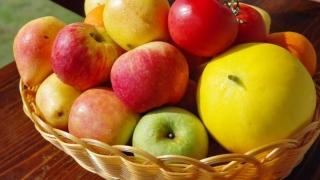 Fructele proaspete, excelente în prevenția unor boli grave!