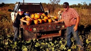 Când iese și agricultura din sărăcie?