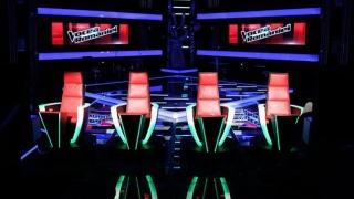 Cine este cel de-al treilea jurat la Vocea României