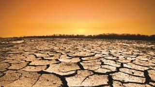 Îngrijorător! Va fi 2016 cel mai fierbinte an înregistrat vreodată?