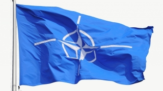 În premieră - Adunarea Parlamentară a NATO, la Tbilisi