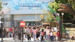 Intrare liberă la Delfinariu şi muzeele constănțene, de 1 Iunie