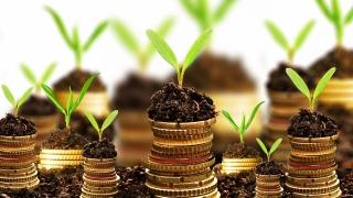 Creștere timidă a investițiilor străine