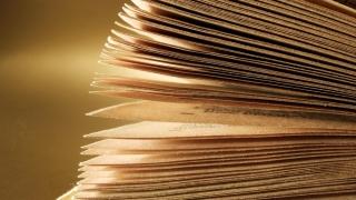 """Invitaţie la lectură: """"Cercetaşii"""", la recomandarea acad. Dan Berindei"""