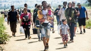 Irakienii se întorc acasă