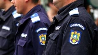 """Jandarmii i-au lăsat în... pom, fără țoalele de """"firmă"""""""