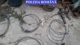 Kilometri de plase de pescuit și trofee de cerb, confiscate de polițiști