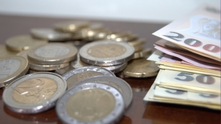 Leul, distrus de euro: cel mai slab nivel din ultimii cinci ani