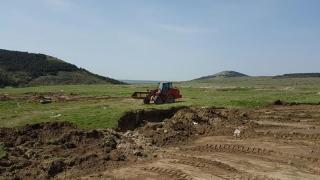 Mai multe animale moarte descoperite pe un câmp, la Gălbiori