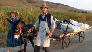 Mai mulţi bani la pensie pentru agricultorii care au lucrat în CAP-uri?