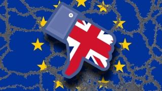 Marea Britanie ar trebui să cotizeze la bugetul UE până în 2020