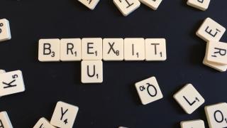 Marea Britanie nu are un plan pentru separarea de UE