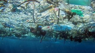 Masa deşeurilor plastice din oceanul planetar - mai mare decât a peştilor, în 2050