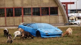 Piața auto, invadată de vechituri poluante