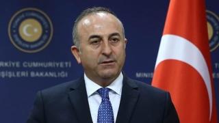 """Ministrul turc de Externe crede că """"Austria este capitala rasismului"""""""