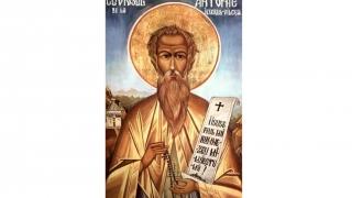 Moaștele Sf. Antonie de la Iezerul Vâlcei, aduse la Constanța