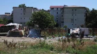 Moloz și cadavre de animale, pe o stradă din Constanța