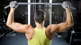 Mușchii PMP Constanța, plini de steroizi. Controlează județul cu doar 6%