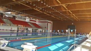 Nouă constănțeni vor participa la Campionatele Internaționale de înot ale României