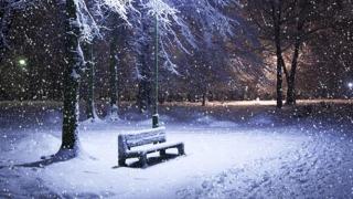 COD GALBEN de ninsori abundente, în mai multe județe din ţară