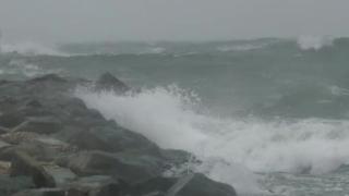 Cod galben de vânt pe litoral