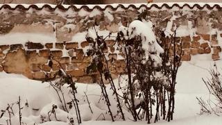 Meteorologii prelungesc avertizările COD PORTOCALIU şi COD GALBEN