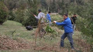 ONG-urile și Primăria și-au dat mâna pentru curățenia generală