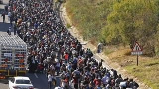 ONU consideră ilegale expulzările colective de imigranţi