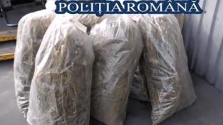 O tonă de droguri, distrusă de polițiști