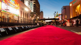 Covorul roșu de la Premiile Oscar ar putea fi... udat de ploaie, și nu de șampanie