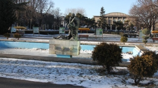 """Vom parca sub parcul din fața Teatrului """"Oleg Danovski"""""""