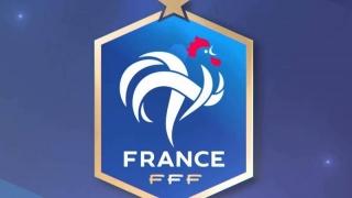 Percheziţii la Federaţia Franceză de Fotbal
