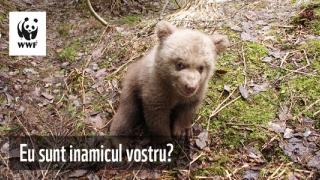 PETIȚIE - WWF ROMÂNIA! Să protejăm animalele!