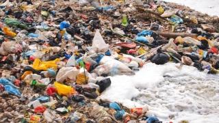 """Poluarea cu plastic, """"o contaminare aproape permanentă"""" a naturii"""