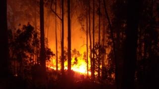 Portugalia în flăcări