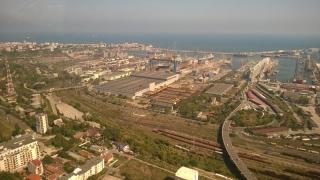 Rețea care tranzita prin Portul Constanța lemn tăiat ilegal, anihilată