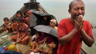 """""""Premiul Nobel pentru Pace a murit"""", ucis de violenţele împotriva musulmanilor rohingya"""
