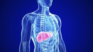 Primul studiu internațional adresat persoanelor care au cancer la ficat!