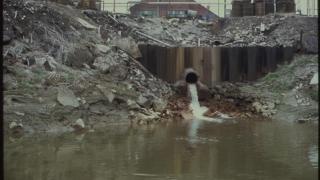 Proiectul Danube Stream - CN ACN începe lupta cu deşeurile
