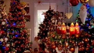 Pur şi simplu nu este destul! O familie din Germania are peste 100 de brazi de Crăciun în casă!
