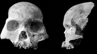 Descoperire extraordinară! Craniu uman, vechi de circa 16.000 de ani