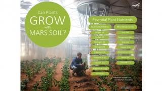 Pot creşte plante pe Marte sau în spaţiu?