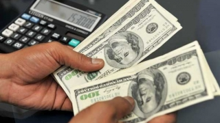 Evoluția principalelor valute